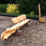A Chainsaw Carved Rustic Bench
