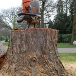 Roker Tree services offers a treee stump removal service
